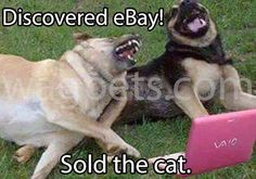 Discovered eBay! Sold the cat.