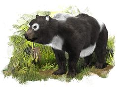 extinct animals | An illustration of a newly discovered extinct species that was related ...