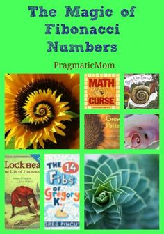 Books for Kids about Math of Spirals :: PragmaticMom