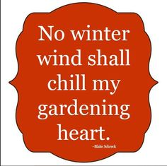 No winter wind shall chill my gardening heart. No winter wind shall chill my gardening heart. Garden Works, Garden Art, Garden Club, Garden Ideas, Garden Fences, Sign Quotes, Me Quotes, Qoutes, Organic Gardening