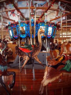 Carousel Ostriches-  Restored carousel in downtown Mansfield, Ohio