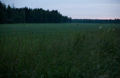 Nighttime in the country in summertime Finland. Via Vihreä Talo.