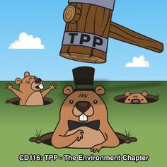 TTP - In the third and final episode in our Trans-Pacific Partnership series, we take a look at the TPP Environment Chapter; would the treaty actually improve enforcement of environmental laws around the world?