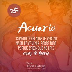 #Acuario ♒ conoce lo que dice tu #horóscopo para este mes en este link Zodiac Signs Aquarius, Zodiac Sign Facts, Sagittarius, Signes Zodiac, Horoscope, Alicia Galvan, Leo, Mindfulness, Inspirational Quotes