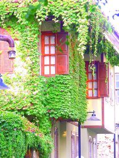 Think green - Antalya, Antalya