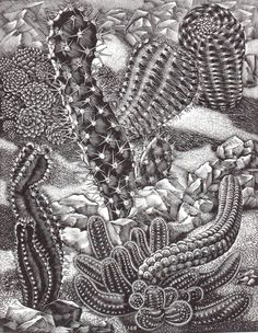 """James Bostock (1917-2006) """"Cactus Garden"""" wood engraving, 1955. Signed, titled, dated and numbered 2nd edition 30. 230 X 180 mm."""