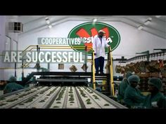 ▶ International Year of #Cooperatives 2012: Cooperative Enterprises Build a Better #World - YouTube