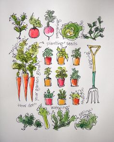 Sketchbook Wandering: Veggies Ready to Deliver!