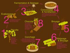 Schéma de fabrication du chocolat