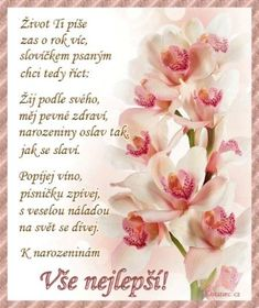 To ti přejí strejda a teta Birthday In Heaven Mom, Happy Birthday Quotes, Birthday Wishes, Birthday Cards, Spider Coloring Page, Coloring Pages, Birthday Presents, Origami, Diy And Crafts