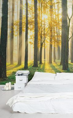 Want to wake up to this view every morning? This forest wallpaper mural captures golden rays of sunshine streaming through the crisp forest. These honey tones are perfect for invigorating bedroom spaces.