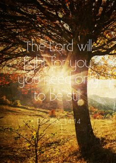 """""""The Lord shall fight for you, and ye shall hold your peace."""" Exodus 14:14"""