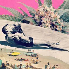 Enhance your experience. Marijuana Art, Cannabis News, Different Points Of View, Weed Art, Location Meublée, High Art, Ganja, Trippy, Surrealism