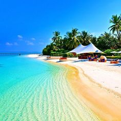The beautiful Rangali Island, Maldives ✨🌴🌴🌺🌺✨ Picture by ✨✨ Tag your special someone ❤️❤️ Voyager Loin, The Beach, Phuket Thailand, Island Resort, Hotels And Resorts, Beach Hotels, Beautiful Beaches, Beautiful World, Beautiful Things