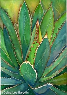 Watercolor of an agave by Debra Lee Baldwin, from her Succulents 2012 Watercolor calendar.