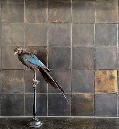 """Metallic old fashioned Dutch tiles """"witjes"""", raven, bird, black, silver, gold, design, kitchen, bathroom, modern"""