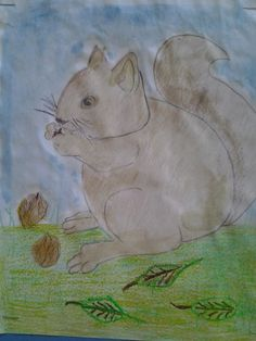 squirrel colored pencil CREATO DAL MIO FANTASTICO ELIA.......ED E` STATO PUBBLICATO SU QUESTO WEB