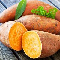 A batata doce emagrece e ajuda a definir os músculos. Veja o cardápio preparado para emagrecer. O cardápio inclui alimentos que ajuda emagrecer