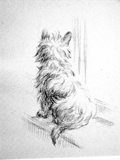 Lucy Dawson CAIRN TERRIER Waiting at the WINDOW - Vintage Dog Print  - 1946 - Fine Quality Professionally Matted Art Ready to Frame