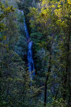 Wentworth Waterfall, Wentworth Valley, Coromandel Peninsula, Whangamata, New Zealand New Zealand Holidays, World Images, Beach Town, South Island, South Pacific, Where To Go, Adventure Travel, Places To See, Waterfall
