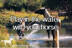 play in the water with your horse