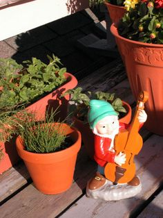 Container gardening tips for a successful garden!