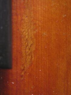 Fiorini-1913 vln — Jordan Sandquist Antonio Stradivari, Violin Bridge, Violin Makers, Violin Parts, Instruments, Music, Violin, Musica, Musik