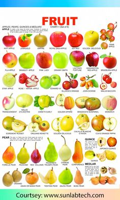 Fruit Chart - 1 catches the attention of tiny tots and makes them aware of the names of various fruits English Tips, English Lessons, Learn English, Food Vocabulary, English Vocabulary, Fruit Recipes, Healthy Recipes, Healthy Food, Fruit Names