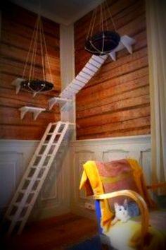 cool cat tree furniture. Cool Cat Tree Furniture