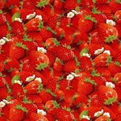 Berry Good Strawberries