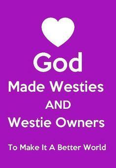 My #Westies bring joy to my life and I share that joy with the world. ❤ ❤    #WestieRescueUSA www.westierescue.com