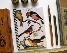 Natural History Birds Spiral Notebook 4 x 6 by Ciaffi on Etsy, $10.00