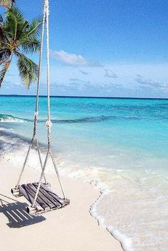 Stel je eens voor: Slapen in een prachtig resort waarvandaan je een prachtig uitzicht over de oceaan hebt en er een romantische sfeer hangt. Witte stranden, palmbomen en azuurblauw water.. dat kan op de Malediven! https://ticketspy.nl/deals/met-een-klm-partner-naar-de-malediven-tickets-va-e561/