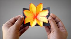 """In this video, you'll learn How To Make Paper Flower Pop Up Card Easy Step By Step.Many people want to know about How To Make Paper Flower Pop Up Card. For that we make this video """"How To Make Paper Flower Pop Up Card Easy Step By Step"""" to help people. Paper Craft Work, Wrapping Paper Crafts, Easy Paper Crafts, Gift Wrapping, Pop Up Flower Cards, Pop Out Cards, How To Make Paper Flowers, Paper Flowers Diy, Popup"""