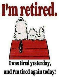 Funny Signs And Sayings Humor Thoughts 25 Ideas Peanuts Quotes, Snoopy Quotes, Peanuts Cartoon, Peanuts Snoopy, Snoopy Cartoon, Cute Quotes, Funny Quotes, Funny Memes, Hilarious