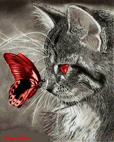 Butterfly meets cat