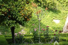 Herrliche Gärten! (Hier im Generalife.)