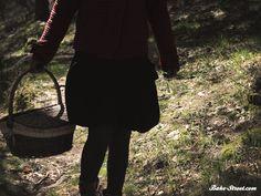 ¿Qué llevaba Caperucita Roja en su cesta?