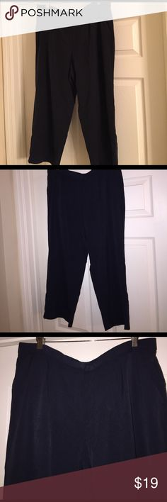 PLUS SIZE NAVY BLUE CAPRIS W/POCKETS Brand new, great for work Sag Harbor Pants Ankle & Cropped
