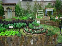 Permaculture Kitchen Garden - Herb Spiral - Eclectic - Landscape - Portland - by Plan-it Earth Design Herb Spiral, Spiral Garden, Herb Garden, Vegetable Garden, Garden Club, Landscape Design, Garden Design, House Design, Garden In The Woods