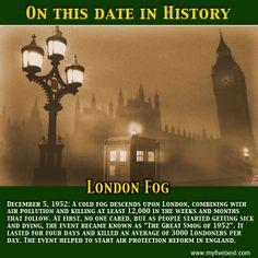 Don't think the environment can kill? Ask the survivors of the London Smog of 1952. Twelve thousand lost their lives. http://www.myfivebest.com