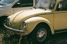 Street Photography, Antique Cars, Antiques, Antiquities, Antique, Vintage Cars