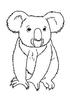 Pin By Emily On Zeichnen Koala Drawing Animal Coloring Pages Bear Coloring Pages