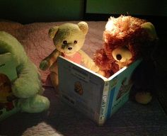 Main Teddy Bear Sleepover 2013 | Flickr - Photo Sharing!