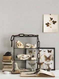 My hubby and boys would love to display their collection in our home like this...