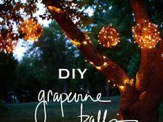 DIY Grapevine Lighting Balls…What a BRIGHT idea!