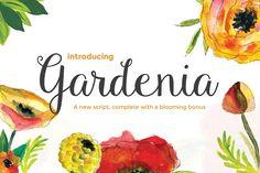 Gardenia Script + Blooming Bonus by Emily Spadoni on @creativemarket