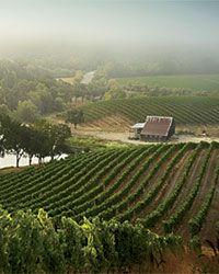 Kistler Vineyard Best New California Wineries