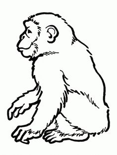chimpanzee coloring page animal coloring pagescoloring book