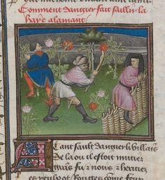 Titel:Le Roman de la Rose  Datierung: 15. Jhdt.; Um 1420  1400-1499   Einzelbände/Artikel:AL00172942 Signatur: Cod. 2568 Han  Zitierlink: http://data.onb.ac.at/rec/AL00172942